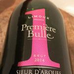 【スパークリングワイン購入レポ】可愛い系より綺麗系女子!ほんわか女子より、強め女子に相応しい!?プライドを感じるスパークリングワイン、『プルミエール ビュル・ナンバーワン』!
